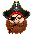pixel pirate portrait detailed isolated vector image