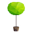 triangle tree in pot vector image vector image