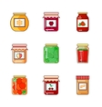 Set of jars with honey jam and vegetables vector image