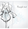Decorative background with iris vector image vector image