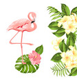 floral exotic natural decoration safary summer vector image vector image