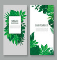 floral leaves invitation card vector image