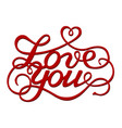 inscription love you vector image