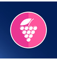 Label logo design winery wine grape premium vector image