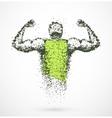 Muscular man vector image vector image