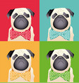 pug puppy dog friend animal vector image