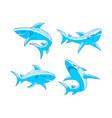 shark blue logo design outline set concept vector image vector image