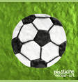 soccer ball on soccer field vector image
