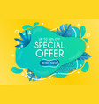 summer special offer background with leaves vector image vector image