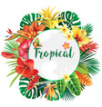 banner from tropical and flowers vector image vector image