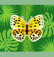 insect with wings yellow butterfly in dots vector image vector image