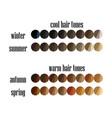 seasonal color analysis hair colors palette vector image vector image