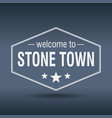 welcome to stone town vector image vector image