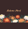 autumn backdrop with blooming flowers fall vector image vector image
