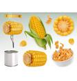corn cob grains corn flakes set 3d elements