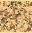 desert seamless camo graphic print autumn vector image vector image