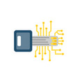digital key flat icon vector image vector image