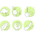 icons vegetables green color vector image