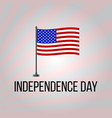 Independence day with flag of the united states vector image