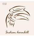 Indian hornbill vector image vector image