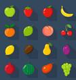 set of flat icons fresh natural fruits dark vector image vector image