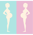 Two beige silhouettes of pregnant women vector image