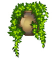 A hanging house plant vector image vector image