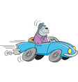 Cartoon gorilla driving a sports car vector image vector image