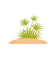 green tropical plant on a vector image