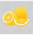 lemon label vector image