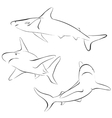 Shark line style symbol vector image vector image