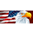 Symbol of USA vector image vector image
