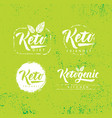 keto friendly diet nutrition design vector image vector image