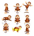 monkey with different expression vector image vector image