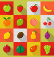 set of flat icons fresh natural fruits vector image vector image