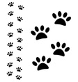 Animal paw path vector image vector image
