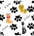 Cats and pawsfutprints seamless pattern vector image