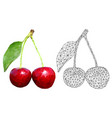 cherries polygonal 3d vector image