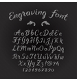Engraving font vector image