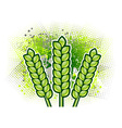 green corn on the background vector image vector image
