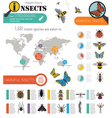 Insects infographic template