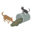 stray animal icon isometric 3d style vector image vector image
