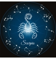 Zodiac sign scorpio vector image