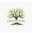 abstract vibrant tree logo design root - tree vector image vector image