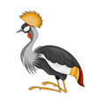 black crowned crane bird icon vector image