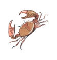doodle crab vector image vector image