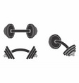 dumbbell curved black fill vector image vector image
