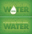 fresh water drops on natural green background vector image
