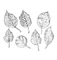 hand drawing leaves 5