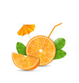 Orange as a Drink with a Straw and Umbrella vector image vector image